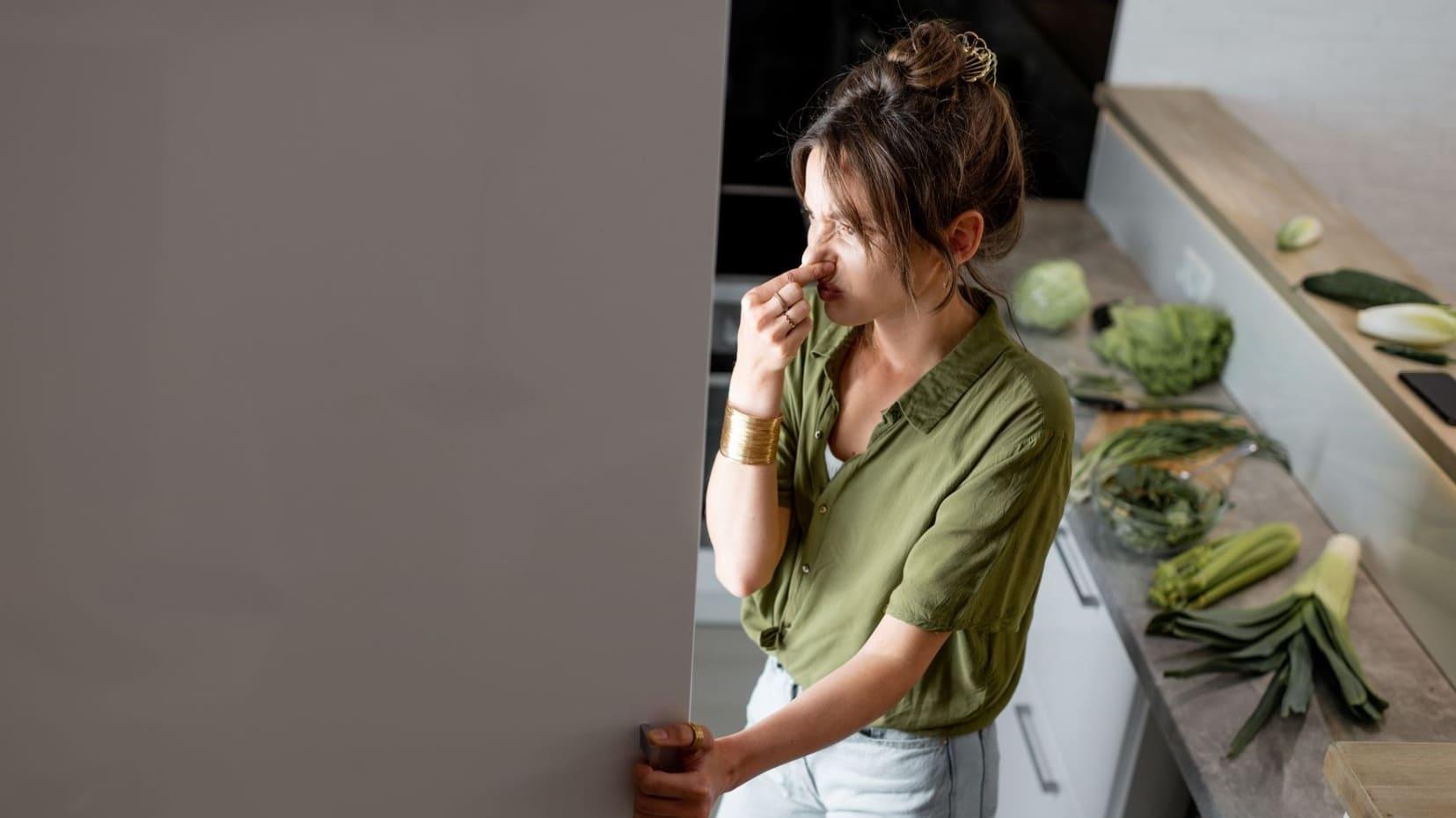 Избавление холодильника от плохих запахов - рекомендации. Услуги клининга в Одессе
